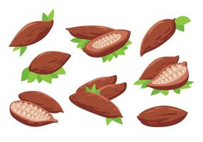 Gratis Cacaobonen Vector