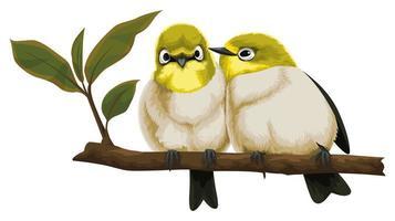 twee vogels die dicht op tak zitten vector