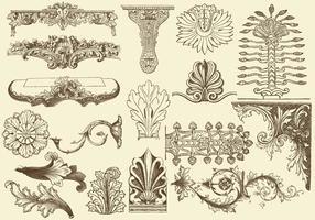 Acanthus Decoraties vector