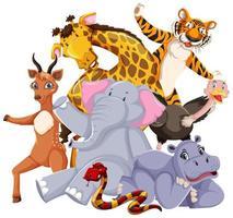 groep wilde dieren gegroepeerd vector