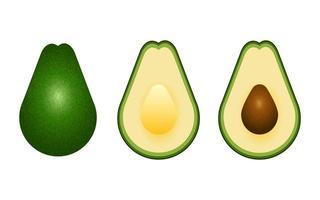 realistische avocado geïsoleerd op een witte achtergrond vector