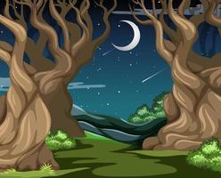 donker bos met grote bomen in de nacht vector