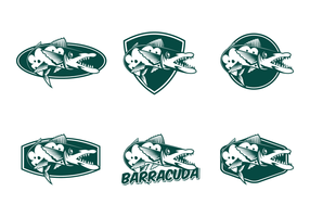 Gratis Barracuda Vector