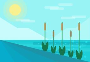 Reeds Platte Illustratie Vector