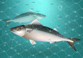 Vissen Gevangen In Visserij Net Ilustratie