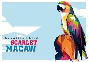 Scarlett Macaw - De mooiste vogel vector