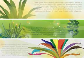 Banners maguey