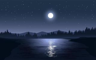 maanlicht nadenken over het landschap van het meer vector