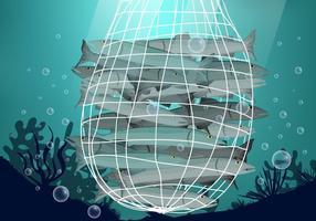 Vissen Gevangen In Net Vector