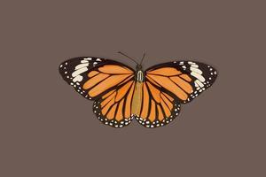 mooie oranje vlinder hand tekenen vector
