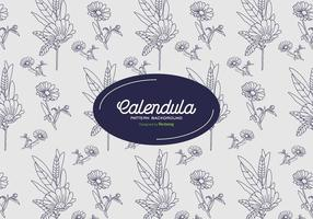 Calendula Achtergrond
