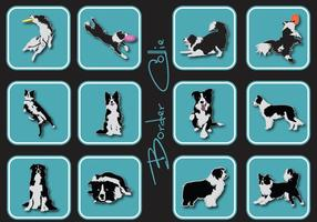 Border collie icoon vector