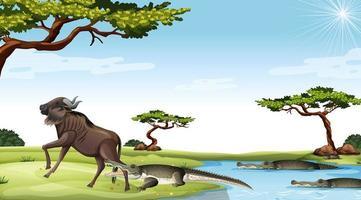 krokodillen die buiten jagen vector