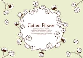 Katoen Bloem Plant Vector