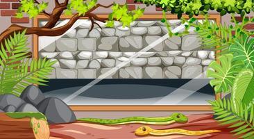 slangenterrarium van binnen gezien vector
