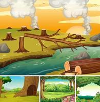 vier verschillende natuurscènes van bos