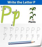letter p tracing alfabet werkblad met plant vector
