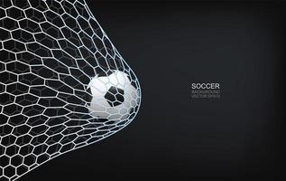 voetbal of voetbal die in net vliegen vector