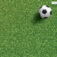voetbal of voetbal op grashoek van voetbalveld vector