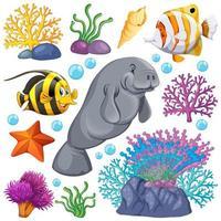 set van zeedieren en koraal op wit