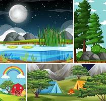 vier verschillende natuurtaferelen van bos en kamperen