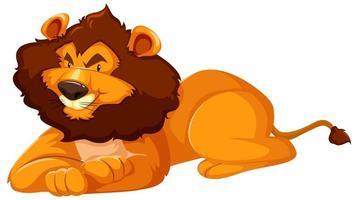 wilde leeuw zittend op een witte achtergrond vector