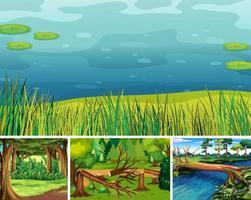 vier verschillende natuurtaferelen van bos en moeras