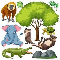 set van schattige wilde dieren en natuur vector