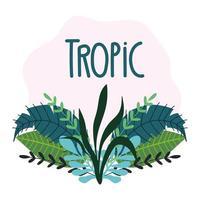 tropische bladeren en gebladerte met letters