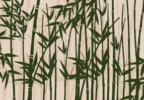 bamboe Vector