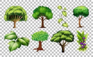 set van boom op transparante achtergrond