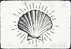 Gratis Hand Drawn Shell Achtergrond vector