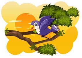 vogel in de scène van de natuurzonsondergang