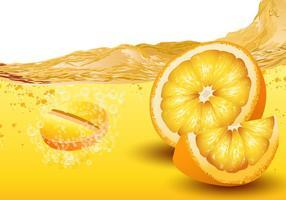 Citrus Flavored Bruisende Vector