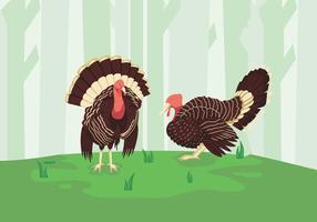 Wild Turkije groene bos illustratie