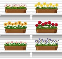 aantal planten op planken