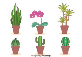 Kamerplanten Collection Vector
