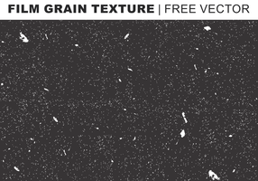 Film Grain Texture Gratis Vector