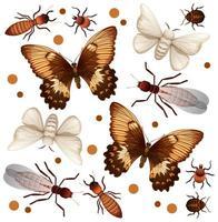 set van verschillende vliegende insecten