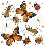 set van verschillende insecten en insecten