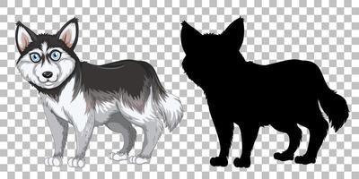 schattige siberische husky en zijn silhouet