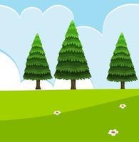 lege natuurtafereel met groene dennen vector