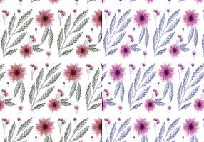 Vector Handgetekende Bloemenpatronen