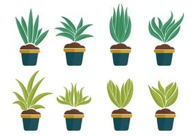 Gratis Yucca Plant Icons Vector