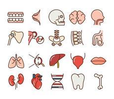 menselijk lichaam anatomie en gezondheid pictogramserie