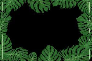 monstera frame voor behang of achtergrond vector