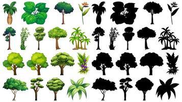 set van geïsoleerde boom