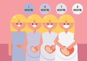 periode van de zwangerschap vector