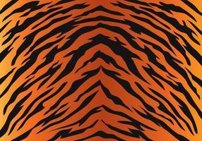 Tiger Streeppatroon vector