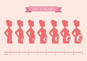 Vector illustratie van zwangere vrouwelijke silhouetten